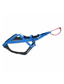Harnais Neewa Sport Ajustable Bleu Alpin'Dog