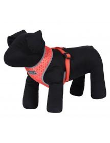 Mini Harnais Rukka Pets Laser Tomate Alpin'Dog Petit Chien