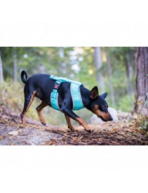 Mini Harnais Rukka Pets Laser Turquoise Alpin'Dog Balade