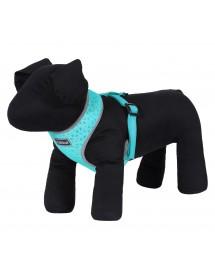 Mini Harnais Rukka Pets Laser Turquoise Alpin'Dog Petit Chien