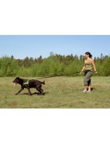 Ceinture Baggen Standard Alpin'Dog Canicross Balade Randonnée