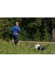 Ceinture Baggen Reflex X1 Alpin'Dog Canicross Balade