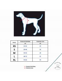 Mini Harnais Rukka Pets Laser Turquoise Alpin'Dog Taille