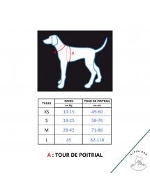 Harnais Neewa d'activité Bleu Alpin'Dog Taille