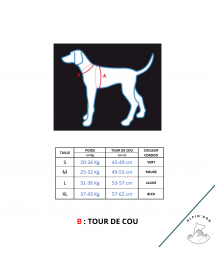 Harnais Neewa Sport Ajustable Bleu Alpin'Dog Taille