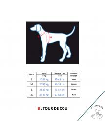 Harnais Neewa Sport Ajustable Rouge Alpin'Dog Taille