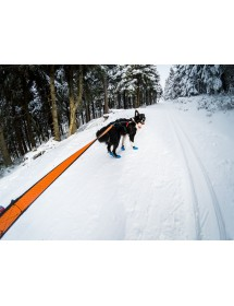Bungee Leash 2M / 2,8M Non-Stop Alpin'Dog Traction