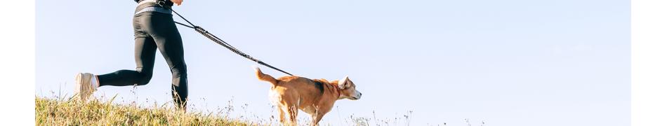 Harnais de Canicross pour Chiens, Sport Canin