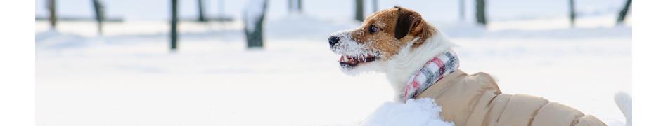 Manteaux de Pluie pour Chien Rukka Pets